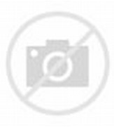 Gnome Doors and Fairy Gardens