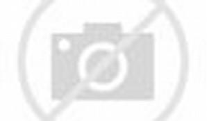 Aboriginal Boomerangs