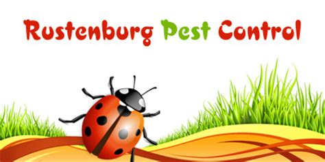 do it yourself pest control bed bugs bed bug sprays do they work termite sprays do it yourself