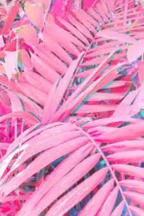imagenes tumblr grandes 17 mejores ideas sobre fondos de pantalla rosas en