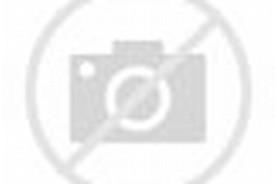 Junior Idol Momo Shiina
