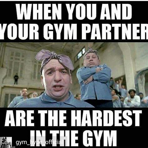 Memes Gym - 17 best images about gym memes on pinterest