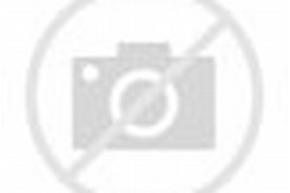 Canada Map with Mountains