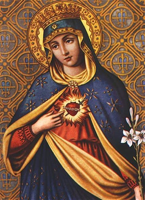 immaculate heart of mary the blessed virgin mary tom perna
