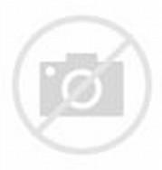 Gambar animasi hewan beruang arung jeram