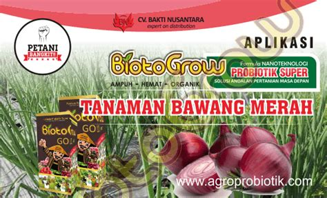 Pupuk Hayati Biotogrow Gold panduan aplikasi biotogrow pada tanaman bawang merah