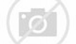 Animated Rainbow Dash