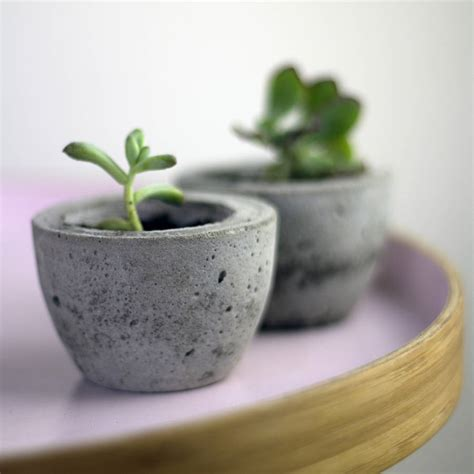 Mini Planters by Set Of Two Mini Concrete Planters By Bells And Whistles