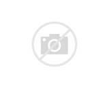 mega-pokemon-y-g-6.jpg 12-Mar-2014 19:05 78K