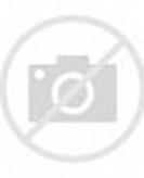 Eagle Cartoon Drawing