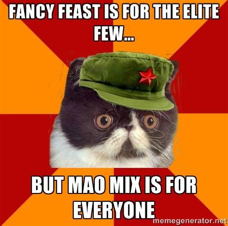 Fancy Feast Meme - fancy feast meme 28 images you bought me friskies
