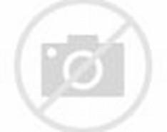 Spongebob 3D Cut Out Printable Paper Crafts