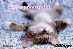 Slaapfeestje animated pictures for sharing 110216875 blingee com