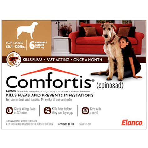 best the counter flea medicine for dogs what is the best flea medicine for dogs breeds picture