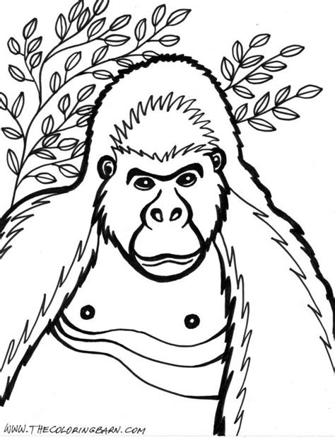 gorilla coloring page to print gorilla coloring pages to print az coloring pages
