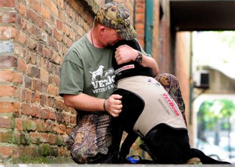 veteran dogs iraq war veteran points to benefits of service dogs the augusta chronicle