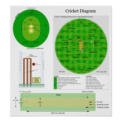 diagram of cricket fielding cricket position field pitch and wicket diagram poster