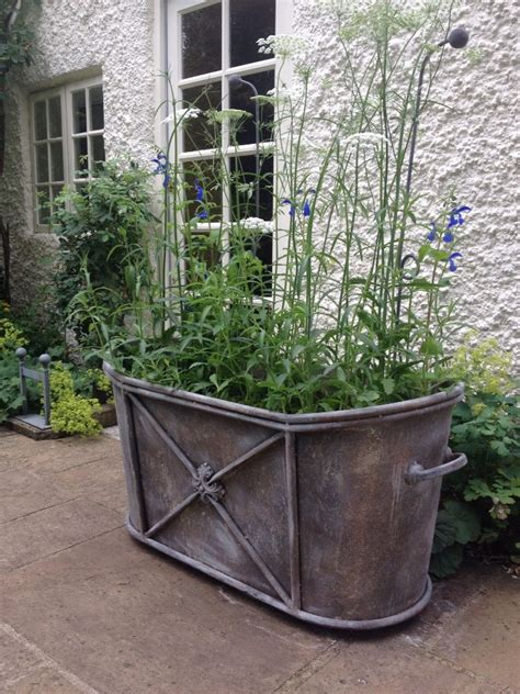Large Zinc Planter by 25 Best Ideas About Zinc Planters On Potted Trees White Gravel And Large Outdoor