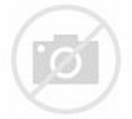 Apple Carving Butterfly