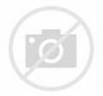 Cute White Rabbit