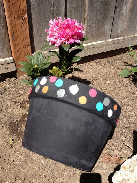 cute flower pots 1000 images about cute flower pots on pinterest minis spray paint flowers and chalkboards