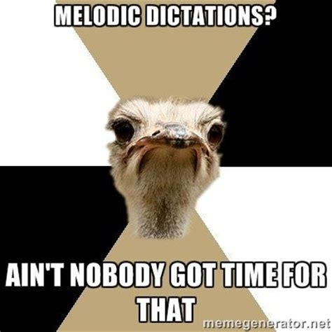 Music Major Meme - music major ostrich via meme generator college life