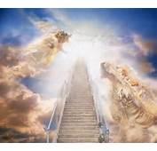Walk Through The Kingdom Guardian Angels Among Us