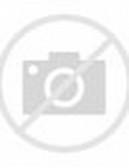 Tribal Skull Decals