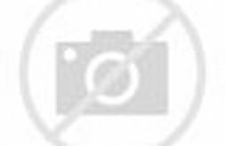 Gambar Lapangan Bola Volly Beserta Ukurannya