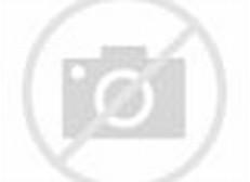 Desain Taman Depan, Belakang Dan Samping Rumah Minimalis Modern Garden ...