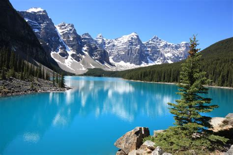 the canadian rockies a photographic tour books coral reefs fossil fuels and climate change why