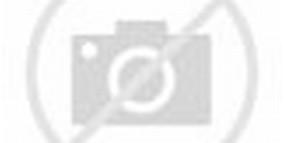 kaligrafi apa itu kaligrafi kita semua tentunya sudah tau apa itu ...