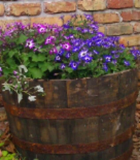 Wooden Barrel Planters At Lowes by They The Cutest Whiskey Barrel Planters