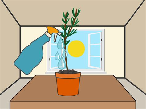 Plants That Grow In Dark Rooms | 3 ways to grow cuttings from established plants wikihow