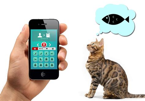 human to cat translator apk easy cat s translator android apps on play