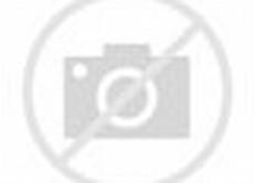 Gambar Monyet Lucu Gokil Dan Unik Terbaru