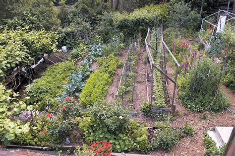 Vegetable Garden On Slope Pacific Horticulture Society West Coast Country Boy