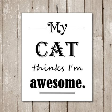 My Cat Thinks I M Awesome cat quotes my cat thinks i m awesome cat by