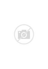 Dessins Gratuits à Colorier - Coloriage Fleur à imprimer et colorier