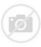 15 Weeks Pregnant Baby Bump