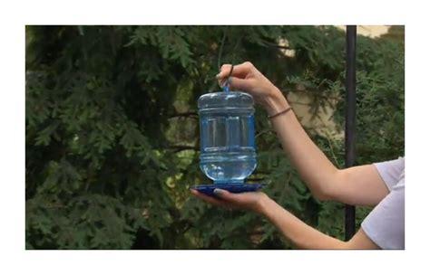 water cooler for birds with a roof bird bath watering window feeder cooler hanging wildlife holder garden outdoor ebay