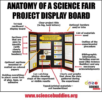 layout for science exhibition science buddies google