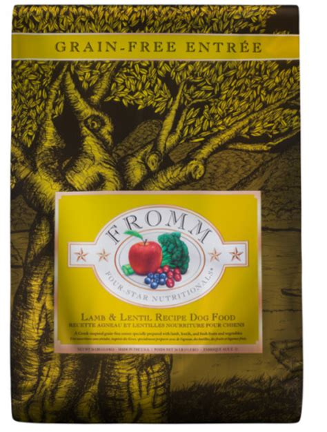 fromm grain free food best grain free foods that your will absolutely