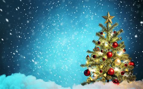 christmas tree hq pics desktop wallpapers