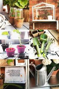 how to grow fresh herbs in your kitchen ikea grow fresh herbs in your kitchen indoor planters
