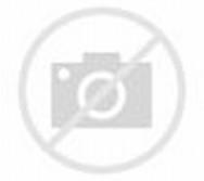 ... membuat miniatur rumah dengan menggunakan bahan basar dari stik es