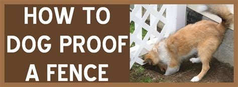 digging fence solutions how to stop a from digging a fence proof fence removeandreplace