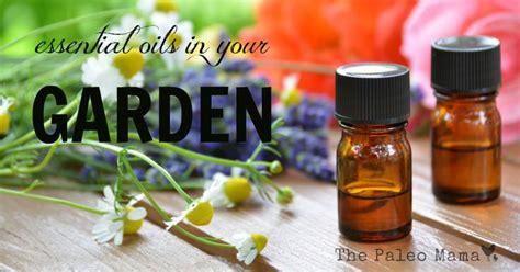 Garden Of Essential Oils Essential Oils For Your Garden The Paleo