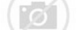Di bawah ini ada beberapa foto minions yang sangat lucu, minions ...