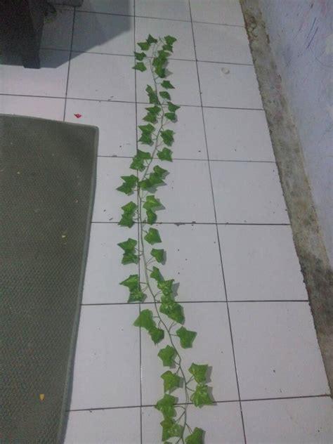 Daun Rambat Bunga Artificial Artifisial Plastik Hias Dekorasi Rumah De jual daun plastik daun rambat tanaman merambat daun hias
